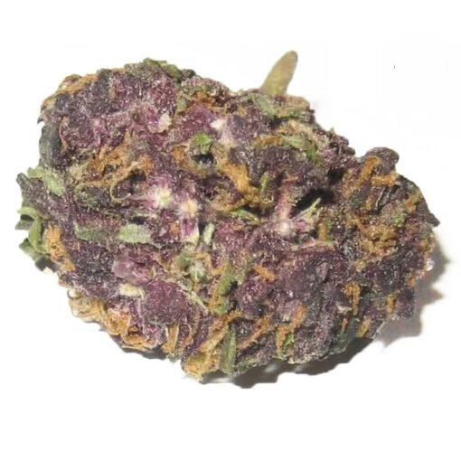 granddaddy Purple Kush